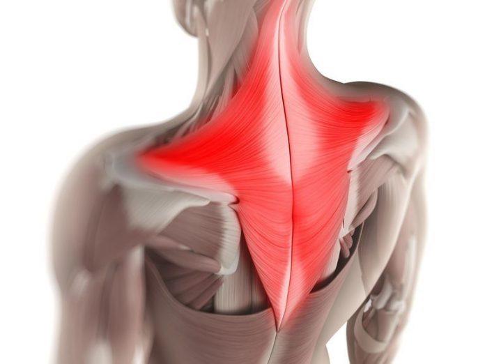 5 conseils ergonomiques pour soulager les maux de dos